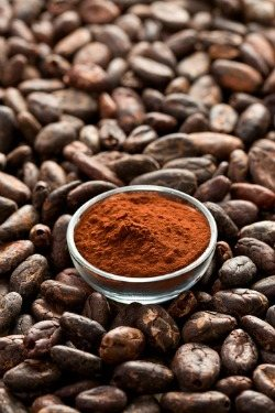 What is Cacao and why is it perfect for Smoothies?