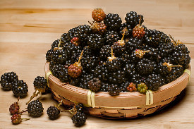 Wild Blackberry Smoothie